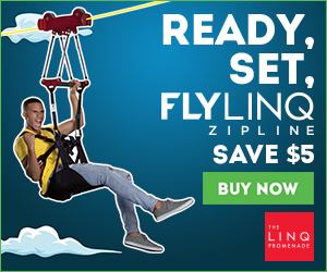 Fly Linq at The Linq Offer