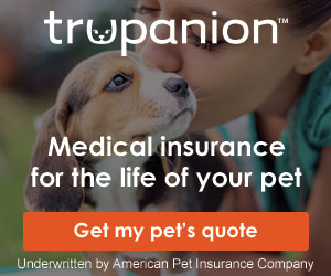 Trupanion Insurance for your Dog