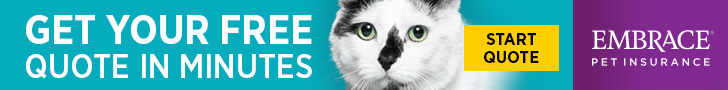 Get Your Free Quote in Minutes - Embrace Pet Insurance