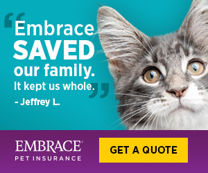 Embrace Saved Our Family - Embrace Pet Insurance