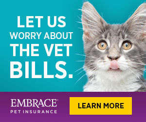 Let Us Worry About the Vet Bills - Embrace Pet Insurance