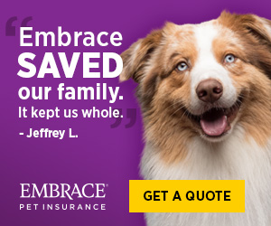Embrace Pet Insurance - What is the Best Pet Insurance to Get for Dogs