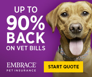 Up to 90% Back on Vet Bills - Embrace Pet Insurance