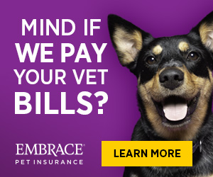 Mind if we pay your vet bills? - Embrace Pet Insurance