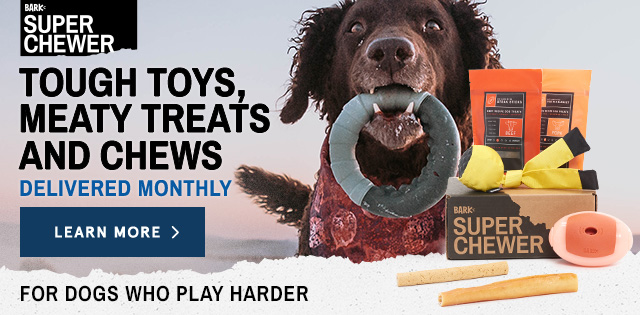 Tough Toys For Chewers