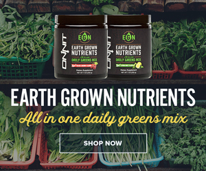 best greens superfood powder drinks reviews
