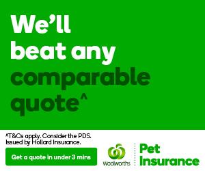 Pet Insurance Banner 300x250