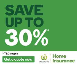 Home Insurance Banner 300x250